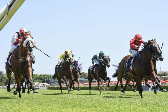 ​Dead Heat For Emperor's Way