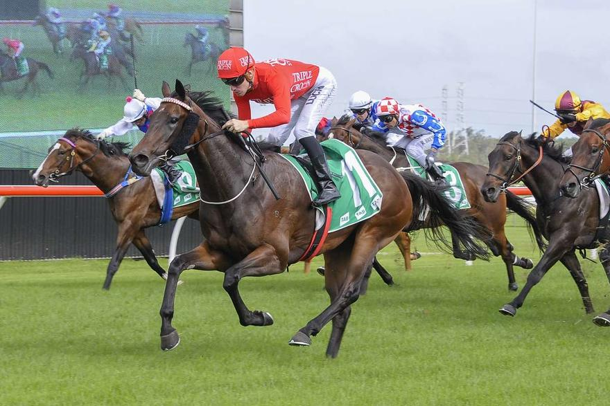 Double Delight At Canterbury
