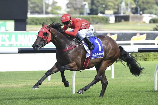 ​REDZEL ANSWERS THE CHALLENGE