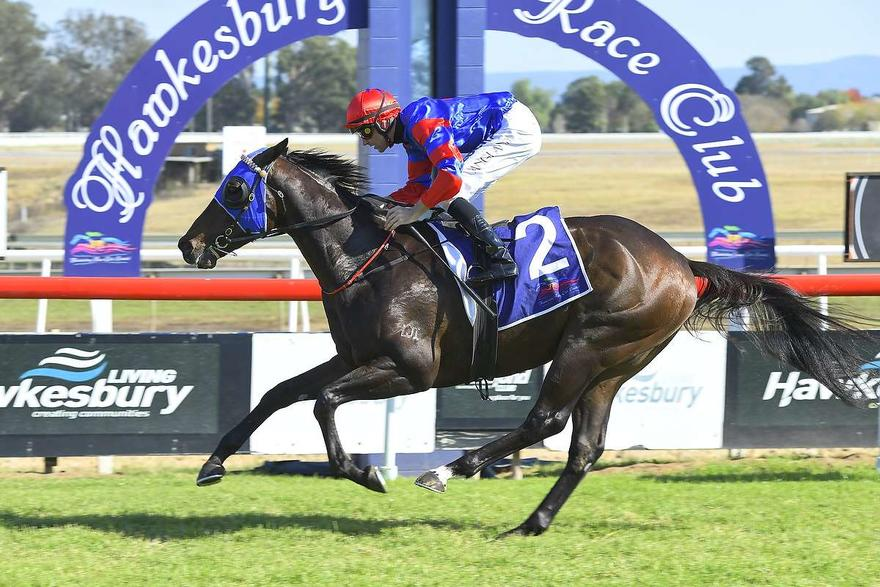 TOROSO WIN A NOD TO THE LATE DON STOREY