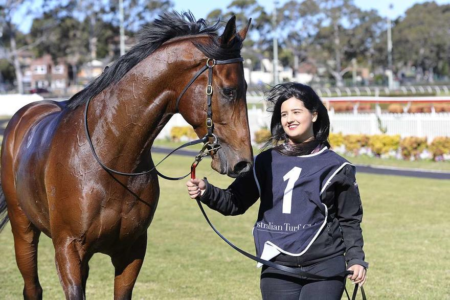 BRAVE SONG SERENADES FLEMINGTON