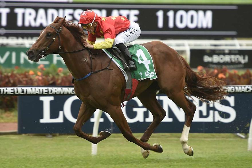 SPRING PREVIEW – HORSES TO FOLLOW