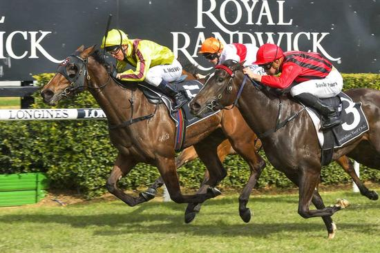 ​INVINCIBLE WINNER FOR STONESTREET