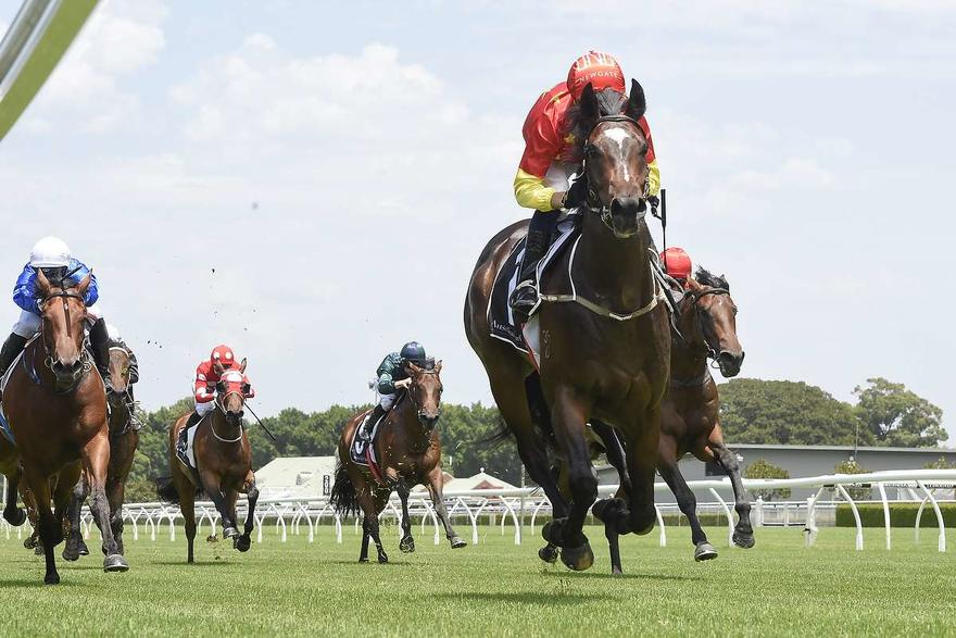 HIGHTAIL FIRMS IN MAGIC MILLIONS 2YO CLASSIC