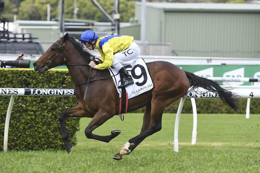 Snowden's Forgotten Fillies Add To Stable's Slipper Force