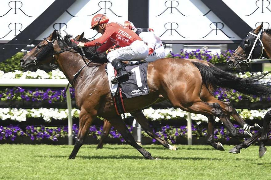 Trio of Group chances for Snowden Racing & Triple Crown Syndications.