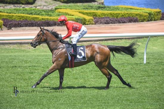 Ruby shines as she dominates at warwick farm