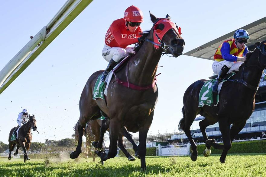 Redzel does the Concorde Stakes three-peat!