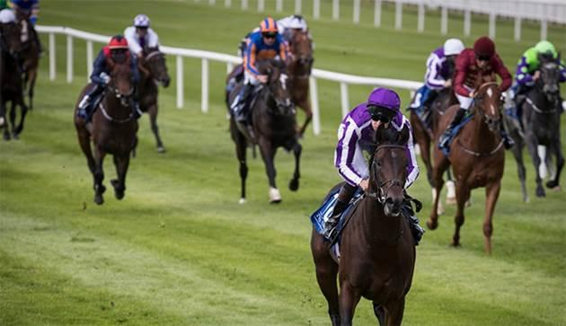 Ten Sovereigns form on show at Seymour