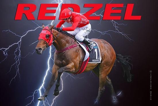Happy Retirement Redzel