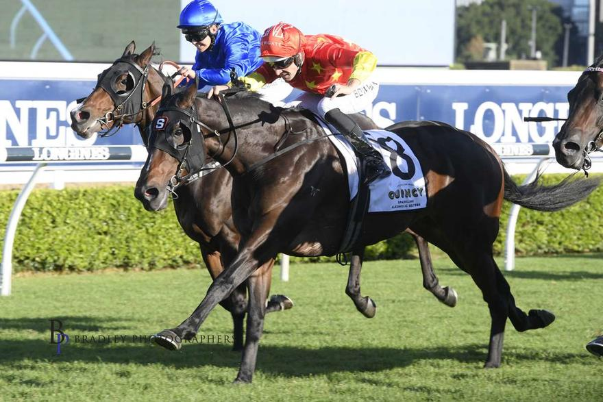 Snowden pair entered for Missile Stakes and Aurie's Star Handicap