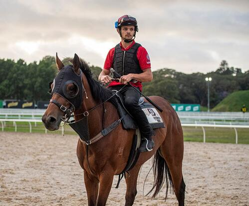 Getting To Know Trackwork Rider, Raphael Desanti