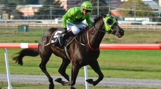 It is a two-horse race to be named Tasmania's best