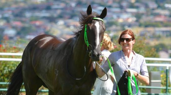 Tshahitsi gives Miller her first winner as a trainer