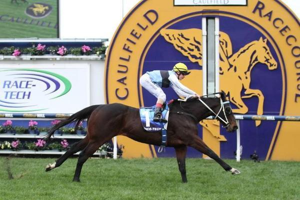 2015 Bletchingly Stakes result - Joey smokes rivals