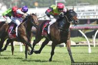 Duke Of Brunswick back to best at Caulfield