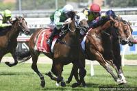 Yulong Baby powers to second straight win at Caulfield
