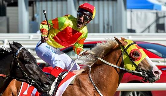 A Mighty roar caps Price's Guineas