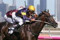 Price possesses Guineas Grunt