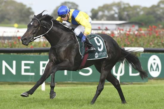 Hiyaam runs away with Group One Vinery