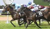 Oregon's Day 'hard to beat' in Doomben Cup