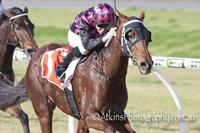 Back-to-back Adelaide wins with All About Nicci