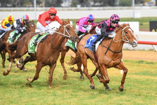 Big Boy's Girl impresses on debut at Swan Hill