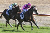 Bendigo filly Gloves Are Off destined for better races
