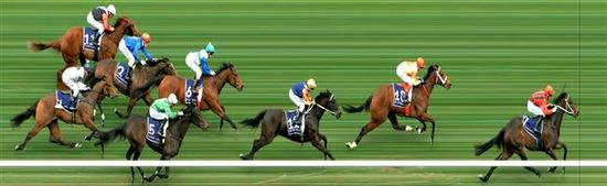 Tassie horses show plenty of Pluck