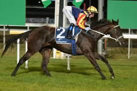 Lady Pluck ready for interstate campaign