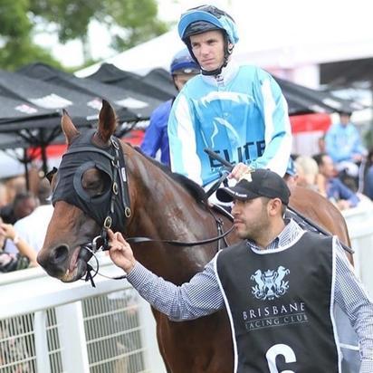 Elite Warhorse Retired