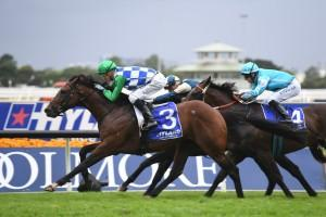 Fifty Stars raced into a Doncaster Mile
