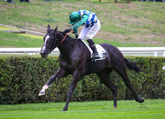 All eyes on Normandy Bridge at Saint-Cloud