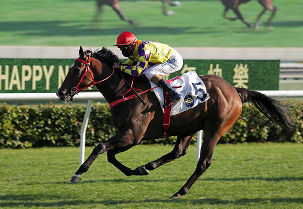 Champion's Way Wins G3 Chinese Challenge Cup