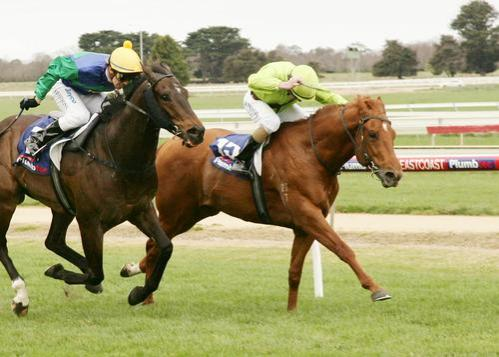 ROYAL ACTION BREAKS HIS MAIDEN STATUS
