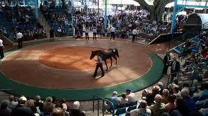 2012 YEARLING SALES DATES