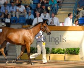 THE INGLIS SYDNEY EASTER SALE