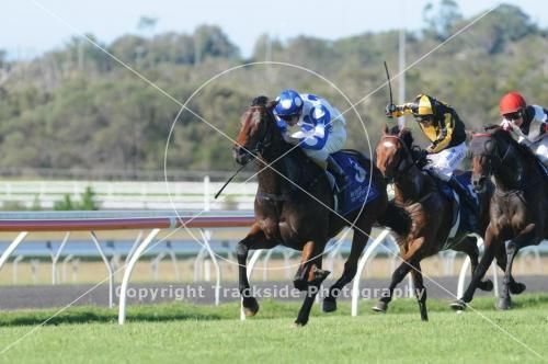 JOHANNA'S OWN WINS IMPRESSIVELY AT THE SUNSHINE COAST