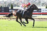 Great front running win by Stratumsphere