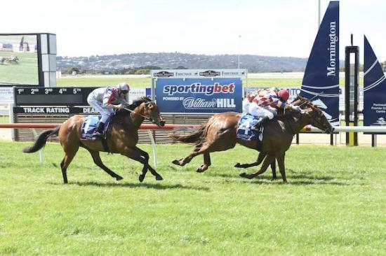 Raven's Fire wins at second career start