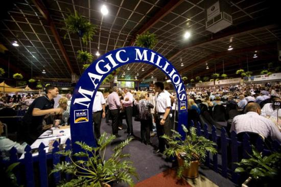 Come join Tony Noonan at the 2015 Magic Millions Gold Coast Yearling Sale
