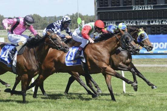 Posh Rock salutes at Ballarat to land big VOBIS bonus