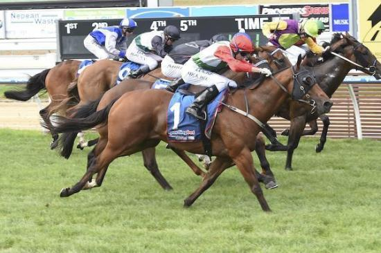Grand Orator surges at Mornington for strong win