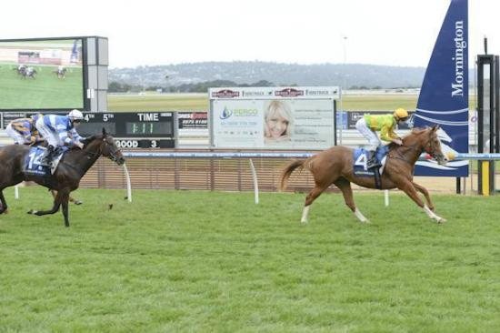 Anaphora breaks through for big win at Mornington