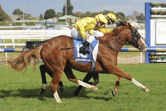 Anaphora books ticket to Queensland with Caulfield win