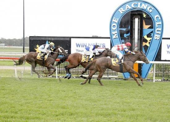 Noonans combine again as Raven's Fire salutes at Moe