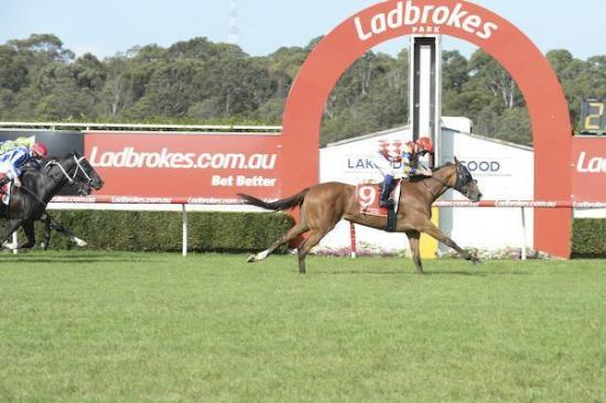 Paradanza surges from last for another dominant win