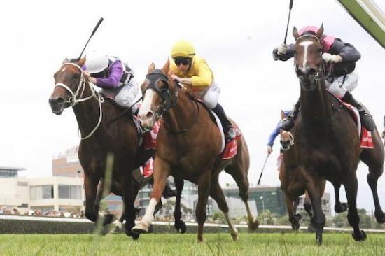 Anaphora bursts through for final stride win at Caulfield