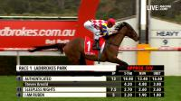 Authenticated decimates rivals at Sandown to finally break maiden