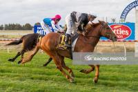 Axis Point back in winner's stall to bring up interstate double for Tony Noonan